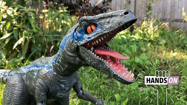 Review: Jurassic World Alpha Training Interactive Velociraptor