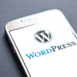 Google dedicated to WordPress
