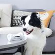 Vijf honden gadgets die je pluizige vriend nodig heeft