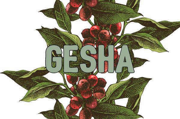 "Stop Calling It ""Geisha"" Already"