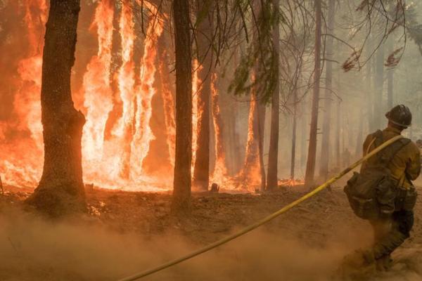 Brandweermannen bestrijden een bosbrand in Yosemite National Park (foto: Reuters)