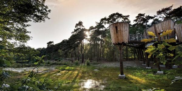 5 Bijzondere vergaderlocaties met uitzicht op de natuur - EventGoodies