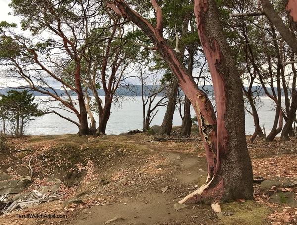Where Paths Lead Us, St. John's Point, Mayne Island B.C.