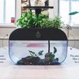Met dit aquarium hoef je nooit meer je plantjes water te geven