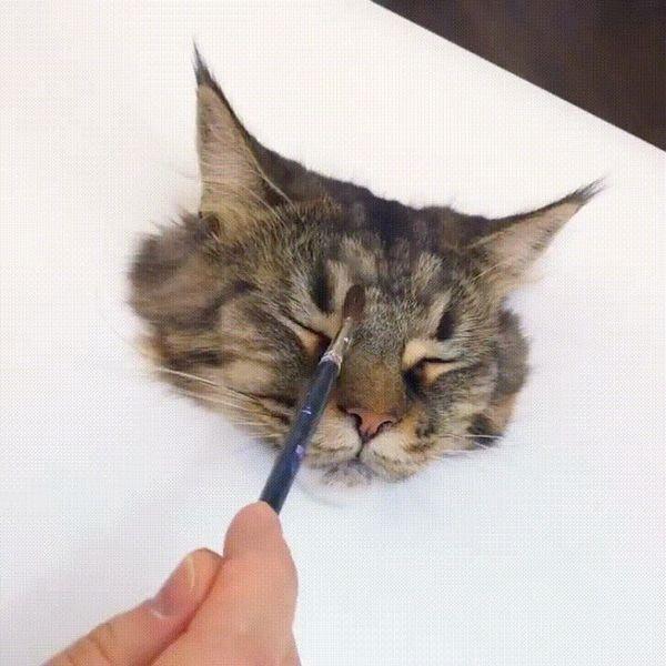 🙀 Oh, Meow God!