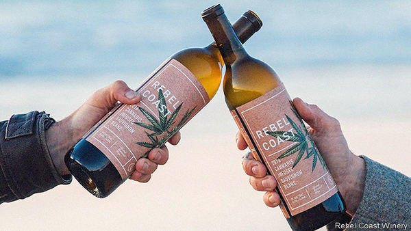 Cannabis v wine in California - Pinot or pot?