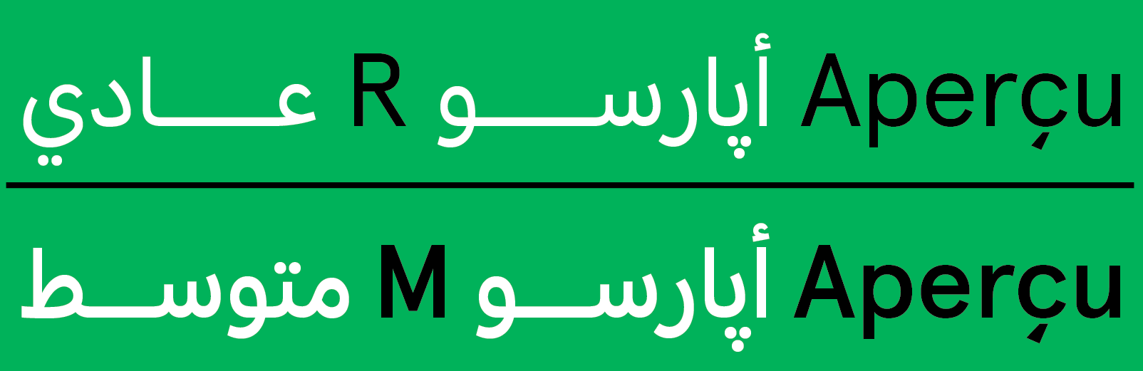 Aperçu Arabic