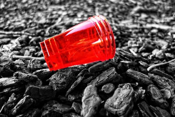 Unia Europejska chce zakazać jednorazowych plastików – Crazy Nauka