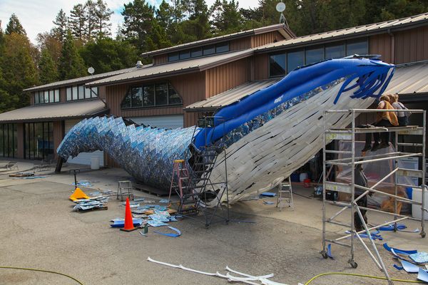 Aquarium Builds Blue Whale Art Installation from Single-use Plastic | Waste360
