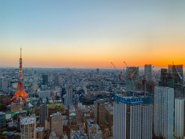You can see Tokyo Tower to the left and Mt. Fuji far in the distance to the right