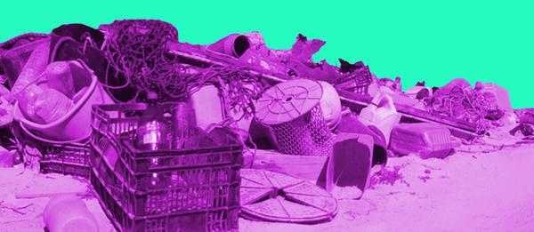 Diese Website widerlegt Mythen über die Verschmutzung der Meere