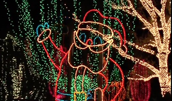 Volunteers needed for HolidayLights at California Living Museum - turnto23.com Bakersfield, CA