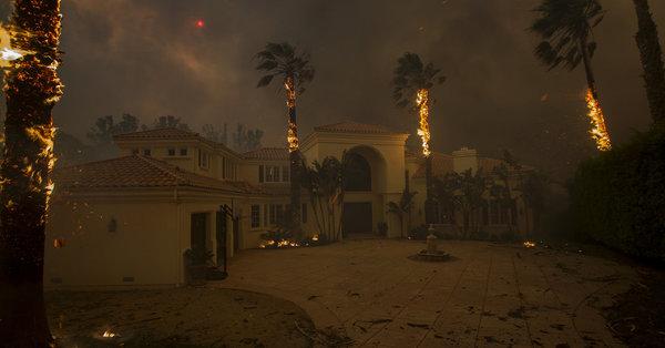 Diese Fotos zeigen, wie verheerend die Waldbrände in Florida waren