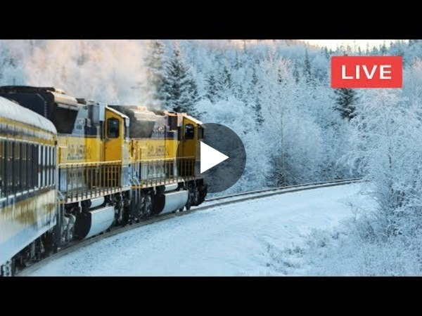 🔴 Live Train 24/7 Train Driver's View Cab Ride Excellent Winter Railway Beautiful Front Window View - YouTube