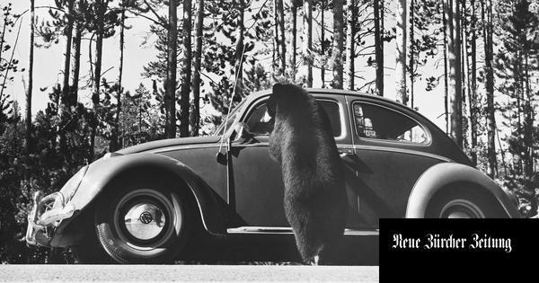 Wer hat's erfunden? Ein Streit um das VW-Käfer-Design kommt vor Gericht