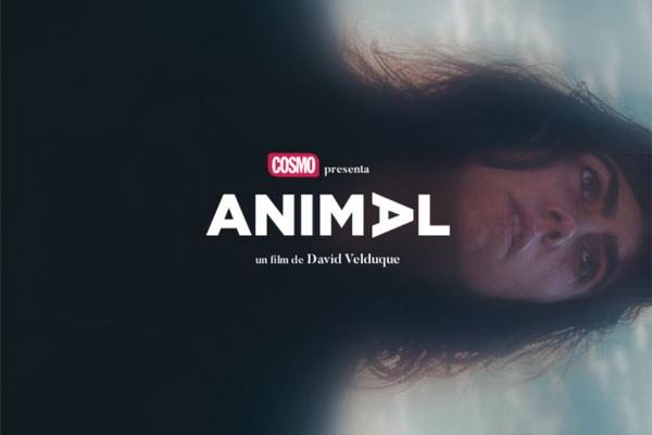 Disfruta del corto 'Animal' con COSMO y Fuera de Series