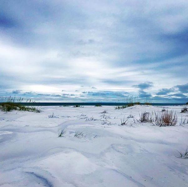Winter in Florida. ❤️ 📷: @jesssie303