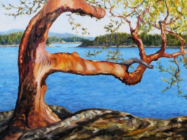 Arbutus Tree Reaching by Terrill Welch | Artwork Archive
