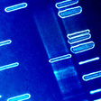 Is Noninvasive Prenatal Genetic Testing Eugenic?