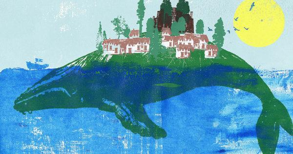 Dieser Harvard-Dozent will den Klimawandel mit Tierrechten stoppen