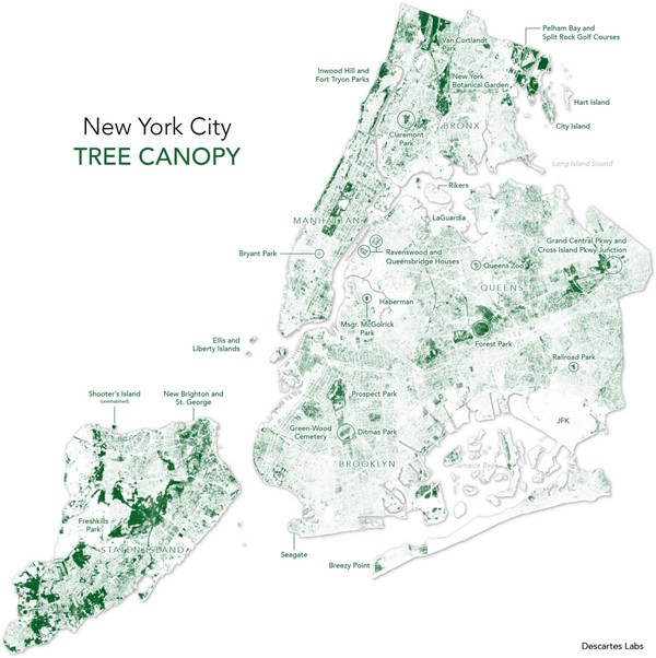 Mapping All of the Trees with Machine Learning