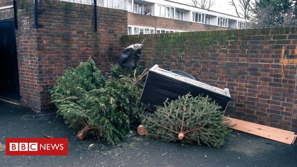Was man nun noch mit dem Weihnachtsbaum machen kann