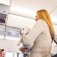 United Airlines: No more puppies on its planes - MarketWatch