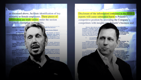 Oracle and Palantir said diversity figures were trade secrets. The real secret: Embarrassing numbers