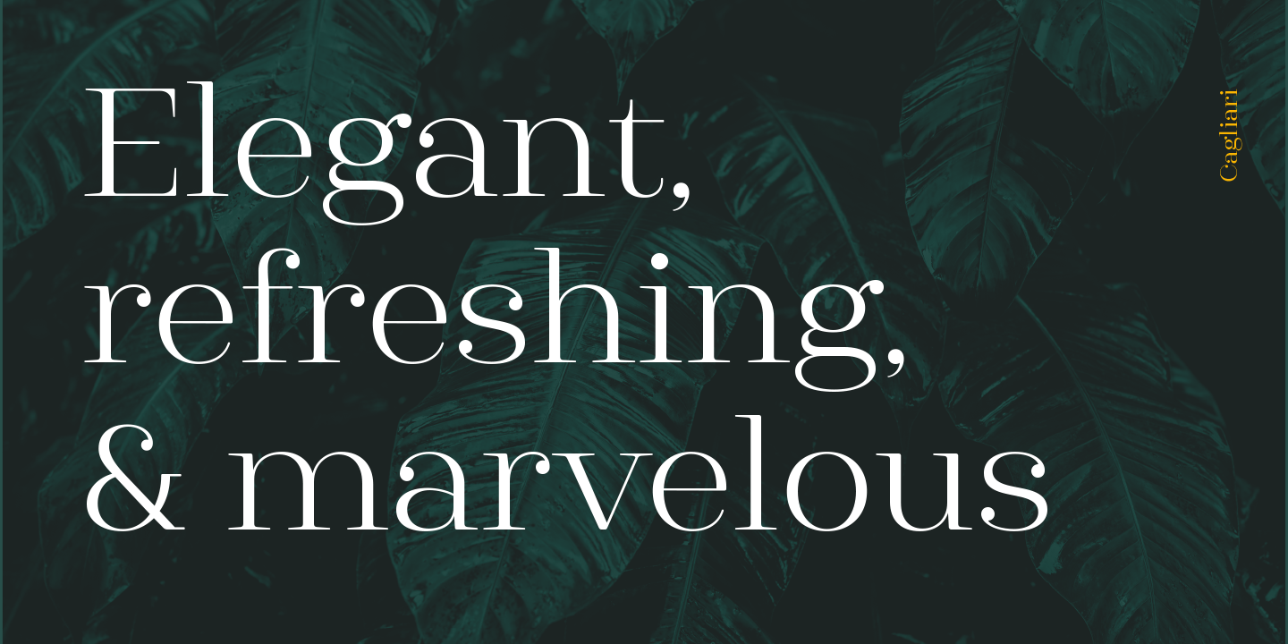 The complete Cagliari family pack (15 fonts) is $29 for a limited time.