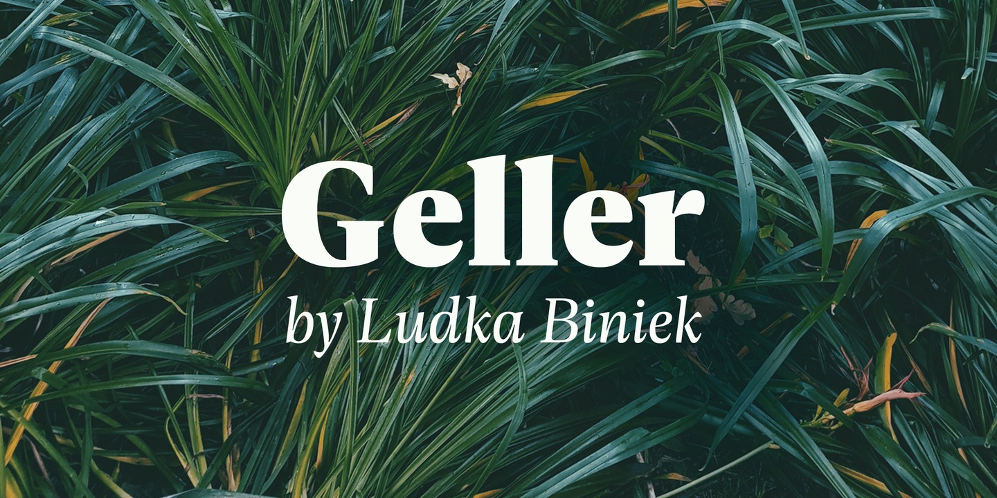 The complete Geller family pack (20 fonts) is $29 for a limited time.