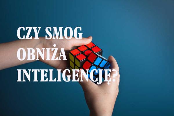 http://blog.kurasinski.com/czy-smog-obniza-inteligencje/