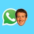 WhatsApp voert nieuwe beperking nu bij alle gebruikers in - WANT