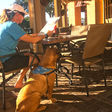 The Ultimate 30A Dog-Friendly Dining List