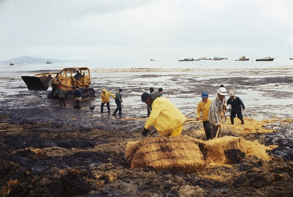 50th anniversary of California offshore oil spill marked - SFGate