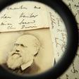 L'arrivo di Darwin alle Galápagos, 180 anni fa - Il Post