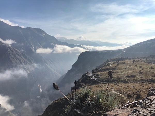 Colca Canyon, waar je soms een condor ziet (maar meestal niet)