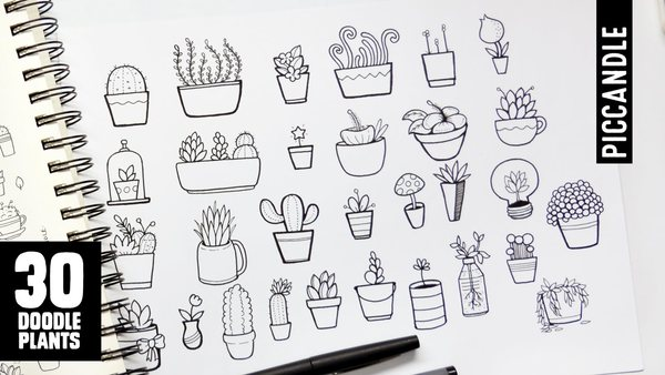 30 Plants to Doodle: Succulents, Cacti and more