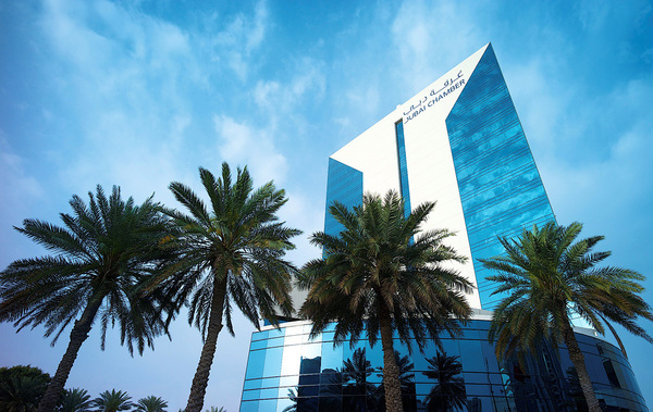 New startup mentorship programme to foster UAE-Africa cooperation