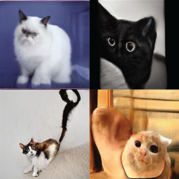 Letting neural networks be weird: GANCats