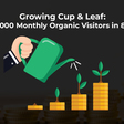 SEO Case Study: 0 to 150,000 Monthly Visitors in 8 Months without Code