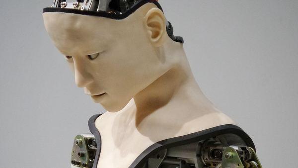 Humanoid robots are here! - Credit: Franck V. on Unsplash