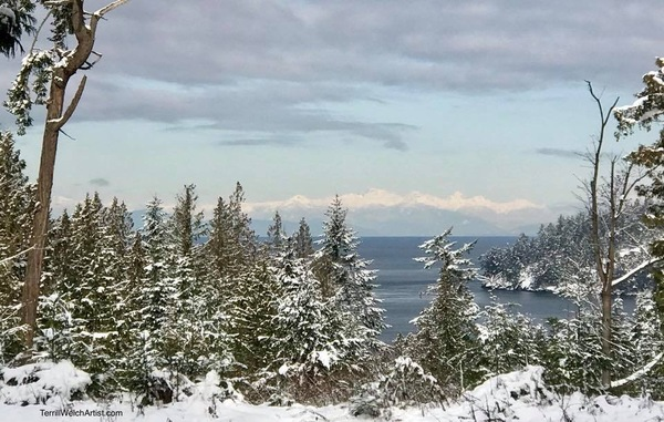 Looking across to the coastal mountains on a snow day by Terrill Welch