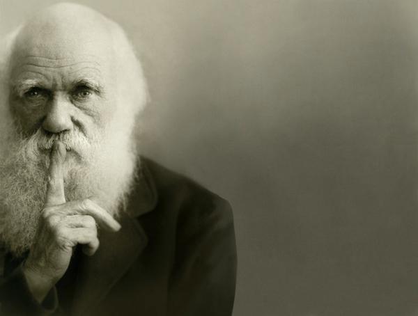 """Czy ewolucja to """"tylko"""" teoria? Nie! – Crazy Nauka"""