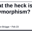 What the heck is polymorphism?