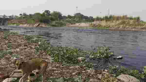 910 Delhi industries fined for toxic effluents