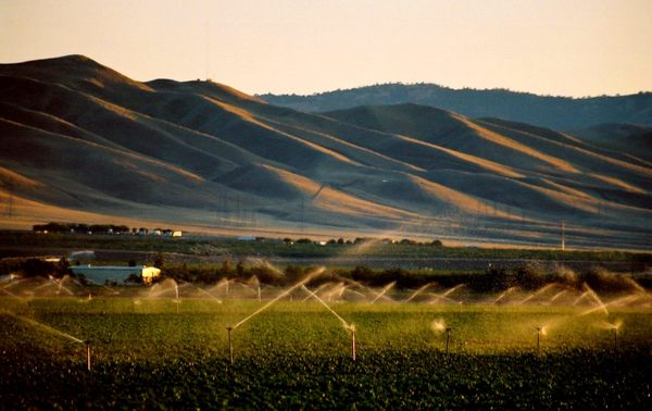California must abandon 535,000 acres of prized farmland to meet water conservation goals
