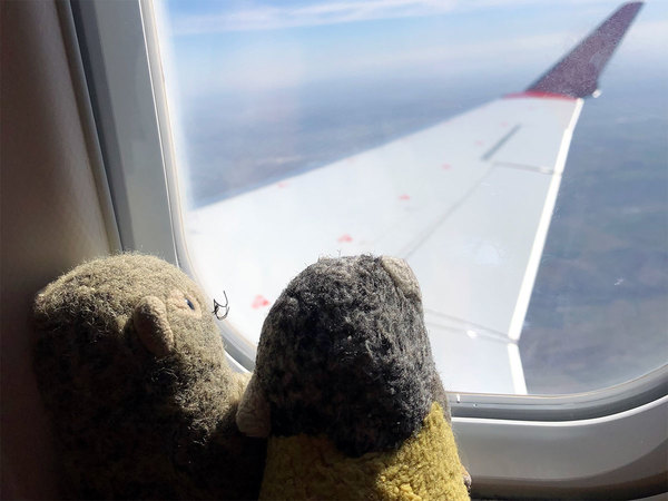 Tinus en Barrie aanschouwen het wonder der luchtvaart.