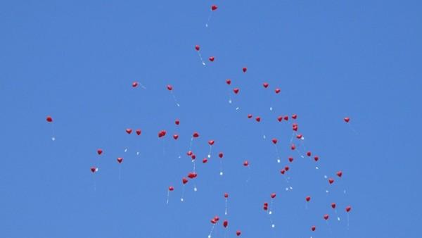 Studie: Luftballons sind besonders tödlich für Seevögel