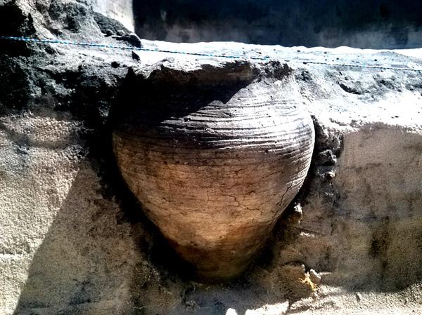 Pod Kazimierzem Dolnym odkopano garnek z 1000-letnią zupą! – Crazy Nauka