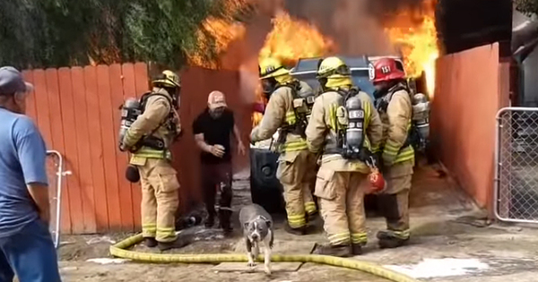 Man Risks His Life to Save His Dog from a Massive House Fire and the Dramatic Rescue Is Caught on Video